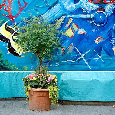 Graffiti - p949m694761 von Frauke Schumann