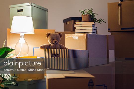 Teddy bear inside cardboard box in an empty room in a new home - p300m2140600 by Maria Maar