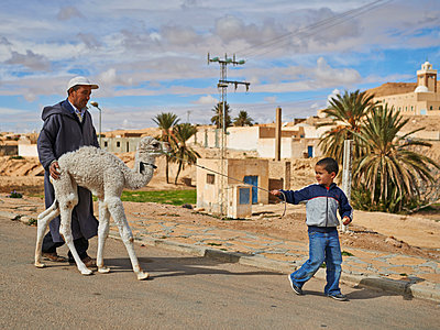 Little boy with dromedary - p390m1011449 by Frank Herfort