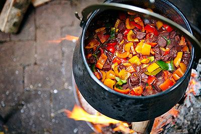 Cooking Goulash Stew - p1026m857197f by Dario Secen