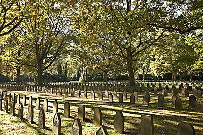 Friedhof - p1092m900084 von Rolf Driesen