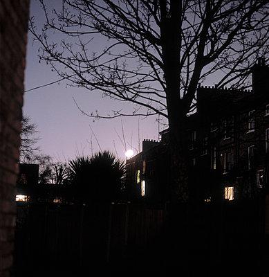 Stadtansicht bei Vollmond - p3880355 von Ulrike Leyens