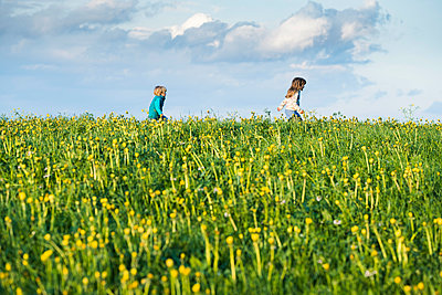 Two happy children running over a meadow with dandelions - p300m2081481 by Steve Brookland