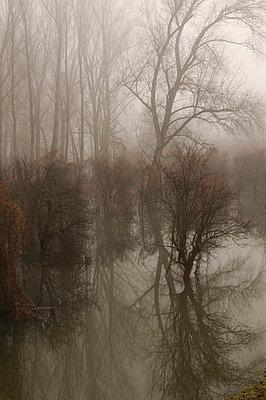 Landscape - p4700139 by Ingrid Michel