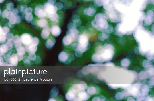 p6750072 von Laurence Mouton