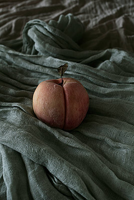 Peach on cloth - p1470m1539155 by julie davenport