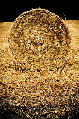 Bale of straw - p4450280 by Marie Docher