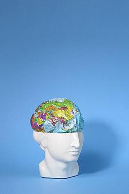 Die Welt im Kopf - p237m2089216 von Thordis Rüggeberg