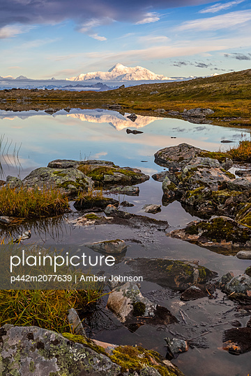 Scenic view of the South side of Denali reflecting in a pond along the Kesugi Ridge Trail, Denali State Park, South-central Alaska; Alaska, United States of America - p442m2077639 by Amber Johnson