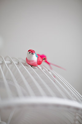 pink bird - p596m1564317 by Ariane Galateau