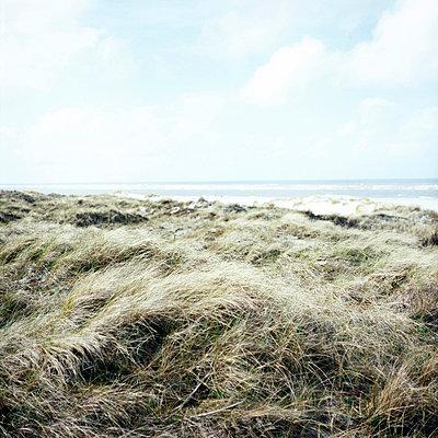 Ostfriesische Insel - p989m918160 von Gine Seitz