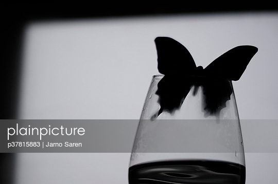Butterfly flying out - p37815883 by Jarno Sarén