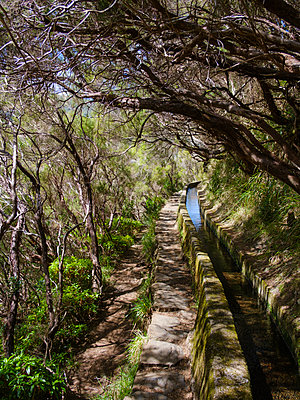 Portugal, Madeira, Hiking trail along irrigation ditch - p1600m2175654 by Ole Spata
