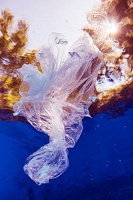 Plastic bag floating in water - p300m2140961 by Stefanie Baum