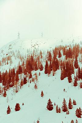 Winterlandschaft in Österreich - p432m2077069 von mia takahara