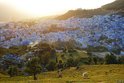 View of Chefchaouen with sheep in foregrund - p1189m1218654 by Adnan Arnaout
