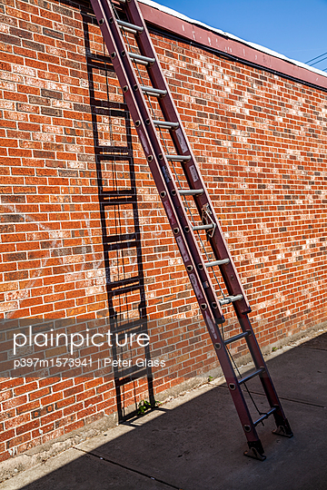 Large metal extension ladder leaning against a brick wall - p397m1573941 by Peter Glass