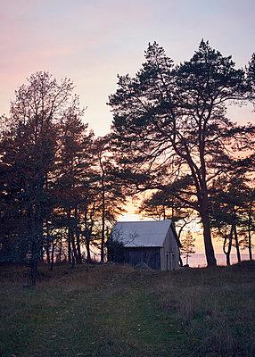 Hütte an der Ostsee in Schweden - p1124m1193554 von Willing-Holtz