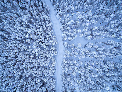 Austria, Gosau, aerial view of road through coniferous forest in winter - p300m1416612 by Spotcatch