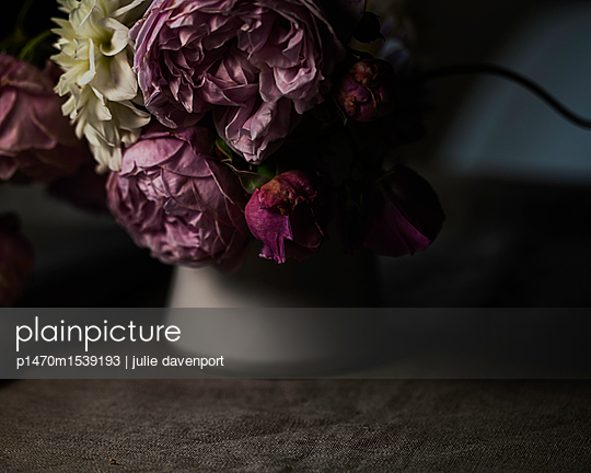 Moody shot of Summer flowers - p1470m1539193 by julie davenport