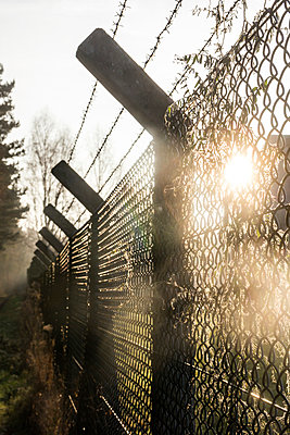 Fence - p739m952886 by Baertels