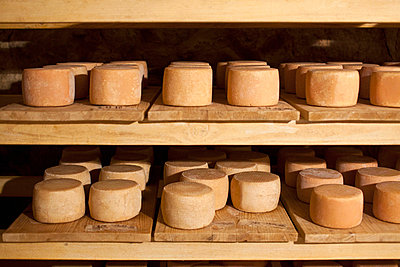 Two shelves of cheese wheels - p30119278f by Paul Hudson