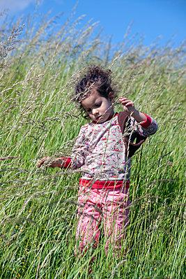 Grasspiele auf dem Deich - p754m1590120 von Valea Diller-El Khazrajy