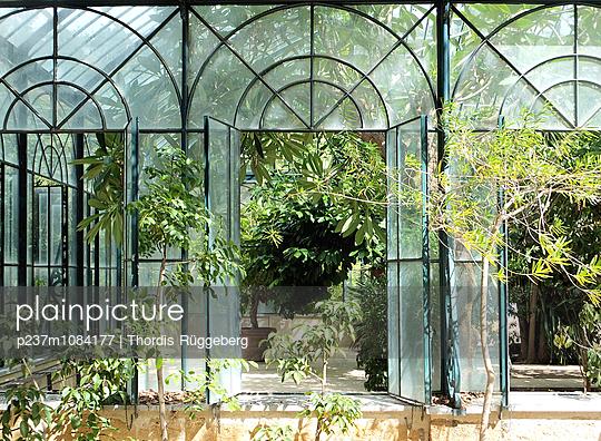 Botanischer Garten - p237m1084177 von Thordis Rüggeberg
