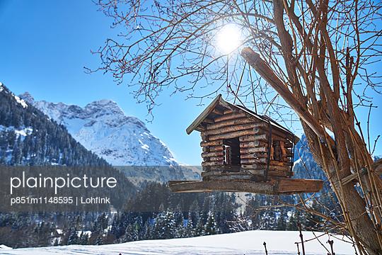 Vogelhäuschen in Winterlandschaft - p851m1148595 von Lohfink