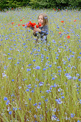 Girl in flower meadow - p2873536 by apply pictures