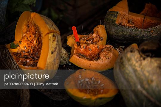 Pumpkins at the market - p1007m2092403 by Tilby Vattard