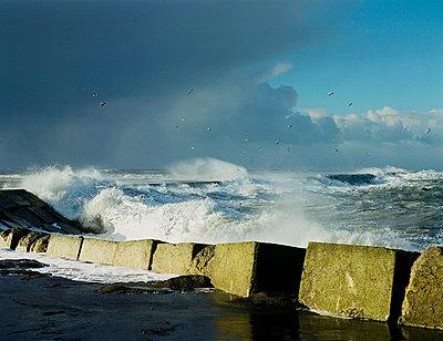 Storm, Netherlands - p1132m1020469 by Mischa Keijser