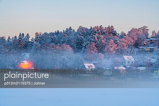 Foggy winter landscape - p312m2119375 by Johner