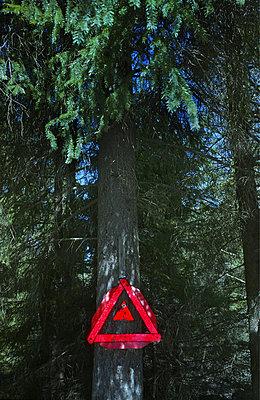 Warning Triangle On Tree - p8473714 by Jan Håkan Dahlström