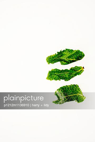 Drei Pfefferminzblätter - p1212m1136910 von harry + lidy