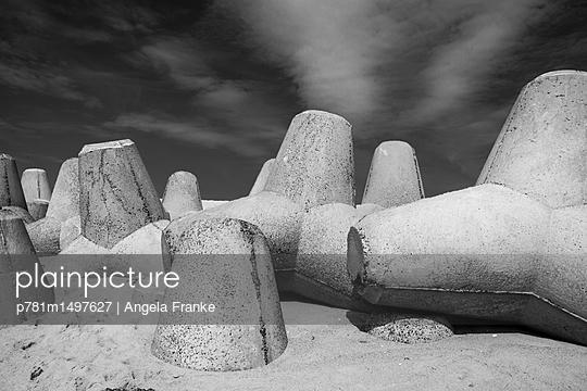 Tetrapoden - p781m1497627 von Angela Franke