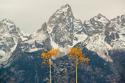 A snow covered mountain range in the Grand Teton national park. - p1100m929145f by David Schultz