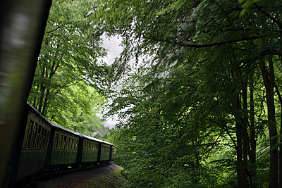 Train driving through a forest - p7030016 by Anna Stumpf