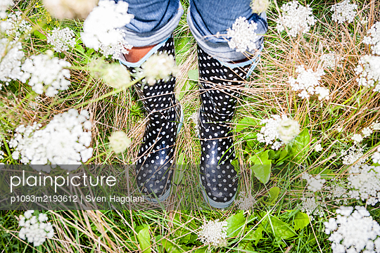 Spotted rubber boots in the meadow - p1093m2193612 by Sven Hagolani