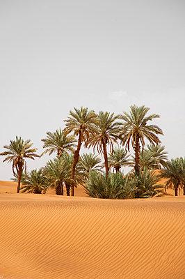 Morocco - p1103m882512 by Virginie Pontisso