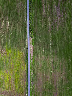 Country road and green fields, drone photography - p1108m2193226 by trubavin