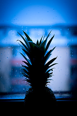 Pineapple at kitchen window - p1149m1525728 by Yvonne Röder
