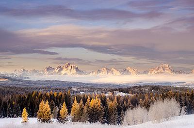 Mountains trees and fog at sunrise.  Grand Tetons, Jackson Hole, Wyoming. - p1424m1501635 by Dan Ballard