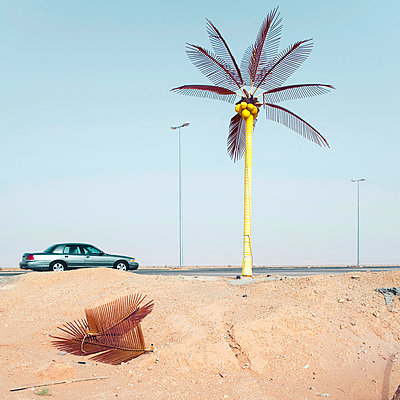 Street lamps and solar-powered palm tree - p1542m2142373 by Roger Grasas