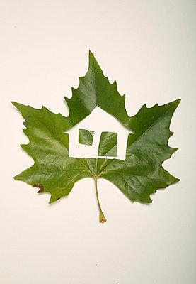 Für die Familie ein Haus im Grünen - p1650765 von Andrea Schoenrock