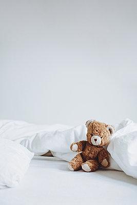 Teddybär - p1006m1441822 von Danel