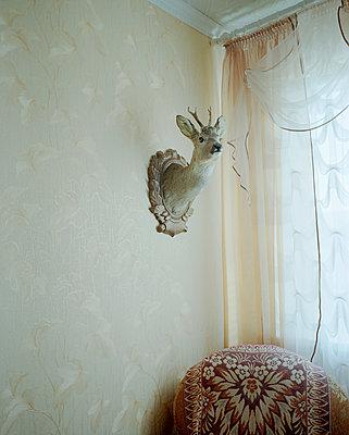 Wohnung - p1205m1463988 von Jan Brykczynski