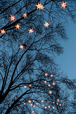 Chain of lights - p949m951774 by Frauke Schumann