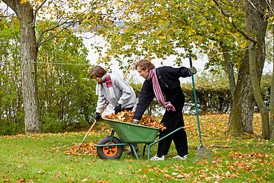 A young couple working in the garden Sweden. - p31221533f by Vince Reichardt