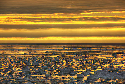Sunrise over an ice filled bay of hudson's bay;Manitoba canada - p442m767730f by Robert Postma